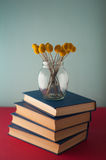Stack of books and flowers Royalty Free Stock Images