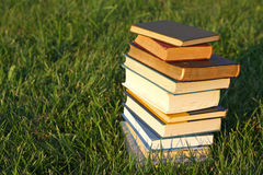 Stack of Books in the Grass Royalty Free Stock Photo