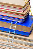Stack of books with ladders isolated on white Stock Images