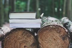 A stack of books lying on felled trees, save trees - read ebook royalty free stock image