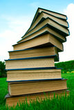 A stack of books lying on grass. A stack of books lying on green grass royalty free stock photo