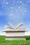 Stack of books outdoor. Wisdom books with letters falling into the pages, shot outdoor Vector Illustration
