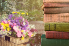 stack of books over the natural background Stock Photo