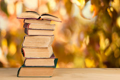 stack of books over the natural background Royalty Free Stock Images
