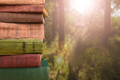 stack of books over the natural background Royalty Free Stock Image
