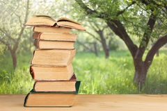 Stack of books over the natural background Stock Images