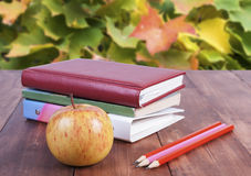 Stack of books, pencils and yellow apple. Series back to school. Stock Image