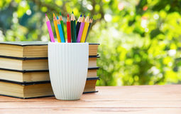 A stack of books and stack of colored pencils on green natural background. Stock Photo
