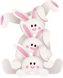 Stack of bunnies Royalty Free Stock Images