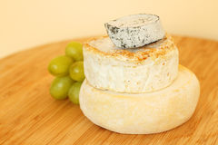 Stack of camembert cheese Royalty Free Stock Photos