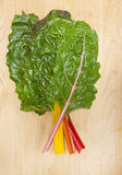 Stack chard leaves. Stock Images