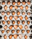 The stack of chicken's egg as background Royalty Free Stock Photography