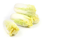Stack of Chinese cabbage. On white background Royalty Free Stock Images