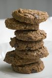 Stack of chocolate chip cookies Stock Image