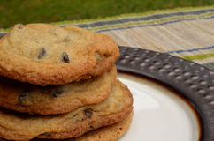 Stack of Chocolate chip cookies displayed on plate Stock Image