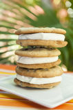 Stack of Chocolate Chip Ice Cream Sandwiches. Stack of chocolate chip cookie and vanilla ice cream sandwiches with a tropical background Stock Photo