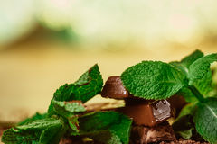 Stack of chocolate pieces with a leaf of mint on wooden background Royalty Free Stock Image