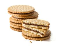 Heap of chocolate sandwich cookies on white background. Stack of chocolate sandwich cookies isolated on white background. some of cookies are cracked Royalty Free Stock Photography