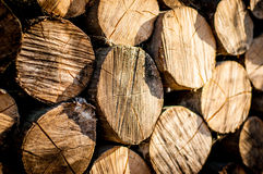 Stack of chopped fire wood Stock Image