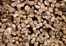 The stack of chopped fire wood Royalty Free Stock Photos