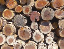 The stack of chopped fire wood Royalty Free Stock Images
