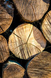Stack of chopped fire wood Royalty Free Stock Images