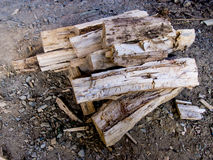 Stack of chopped firewood Royalty Free Stock Image