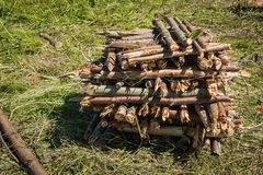 A stack of chopped firewood. On a sunny summer day Stock Photo