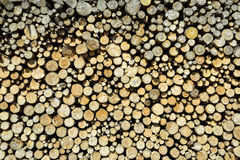 Stack of chopped wood Stock Images