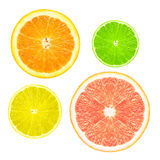 Stack of citrus fruit slices. Royalty Free Stock Photo