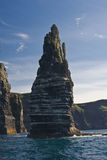 Stack at the Cliffs of Moher Royalty Free Stock Images