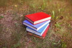 A stack of closed books outdoor. Books in the forest Stock Photography