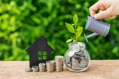 Stack of coins, paper house and growth sprout plant with hand wa. Tering as business finance or grow investment concept stock images