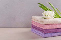 Stack of colorful bath towels with hyacinth flower on light back Royalty Free Stock Photo
