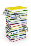Stack of colorful books with dollar bills Stock Image