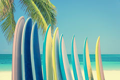 Stack of colorful surfboards on a tropical beach by the ocean with palm tree, retro vintage filter Royalty Free Stock Image