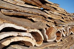 Stack of Cork layers. Layers of cork stacked dry out in the sun Stock Image