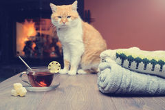 Stack of cozy knitted sweaters and cup of hot tea with lemon Royalty Free Stock Photography