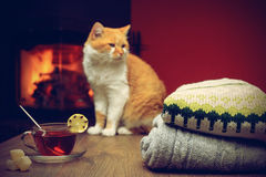 Stack of cozy knitted sweaters and cup of hot tea with lemon Stock Photos