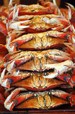 Stack of crabs. A stack of crabs, each for sale stock photo