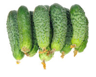 Stack of cucumbers with dry flowers isolated over white Stock Image