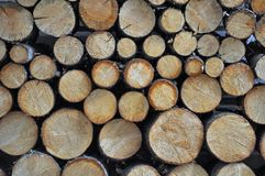 Stack of cut firewood Royalty Free Stock Photography