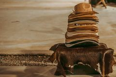 A stack of different cowboy hats, retro. A stack of different cowboy hats, retro royalty free stock photos