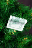 Stack of dollars on the green tree Royalty Free Stock Images