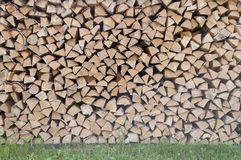 Stack of dry birch firewood Stock Image