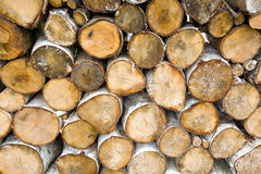 Stack of dry birch firewood Royalty Free Stock Photography