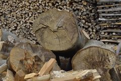 Stack of dry firewood. Can be used as background. Can be used also for : Metaphoric expression of the planet`s deforestation process Royalty Free Stock Photo