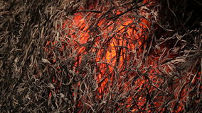Stack of dry grass on fire stock video footage
