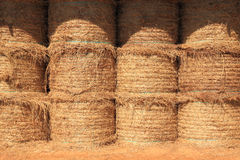 Stack dry hay in barn Stock Images