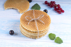Stack of Dutch caramel waffles. Dutch waffle tied with string on Royalty Free Stock Image